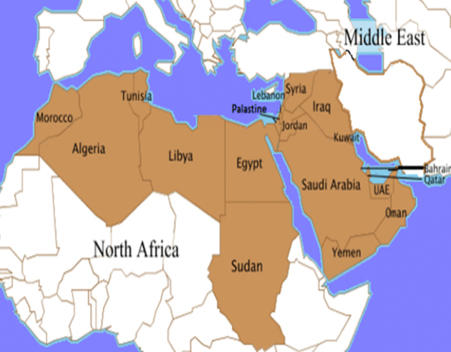 Private investigations in middle east and africa